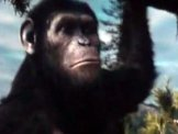 Rise of the Planet of the Apes video